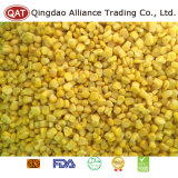 Qualität gefrorene süsser Mais-Kerne