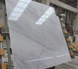 カラーラの中国の白い大理石の白い大理石のタイル
