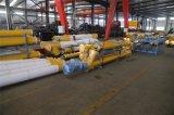Convoyeur de vis concret de centrale pour la poudre à vendre (LSY219)