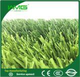 Openbaar Kunstmatig het Modelleren van Gebieden Gras