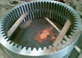 Het BinnenToestel van het Staal van de Precisie 1045/2Cr13/F316 van het smeedstuk