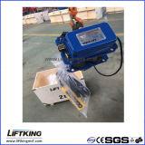 Hijstoestel van de Keten van de Snelheid van Liftking 2t het Dubbele Elektrische met Elektrisch Karretje (ECH 02-01D & et-02D)