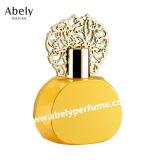 De kleine Fles van het Parfum van het Glas van de Rechthoek van het Volume met Leer GLB
