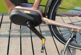 Bici verde elettrica della città della bici di Caldo-Vendita con il motore massimo 36V250W