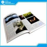 Boeken van de Pocket van de Kleur van het Af:drukken van de douane de Volledige