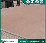 La mejor madera contrachapada comercial del precio WBP Bintangor para los muebles 1220X2440m m