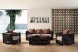 Sofà esterno di vendita caldo della mobilia del rattan sintetico di nuovo disegno impostato usando per la barra di caffè /Garden & l'hotel da Sinle/Double/3-Seat (YT602)