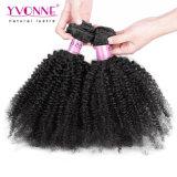 Prix d'usine Afro Kinky Curly Brazilian Hair Extension