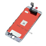 Tela do telefone móvel do LCD para o iPhone 6s mais a venda por atacado do conjunto do LCD