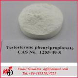 CAS 5721-91-5 높은 순수성 처리되지 않는 스테로이드 분말 테스토스테론 Decanoate