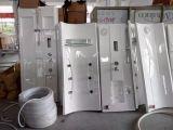 円形整形乾燥しなさい/湿った組合せSteamroom (M-8258)