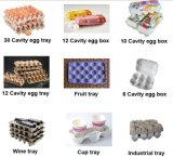 Pedaços de 3000-5000 /hora Carton Celulose Reciclada Máquina tabuleiro de ovos, máquina de embalagem de ovos