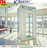 Elevatore residenziale della villa domestica del passeggero con la decorazione lussuosa dall'elevatore di Bester