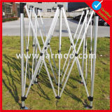 Kundenspezifisches bewegliches Zelt der Werbungs-10X10