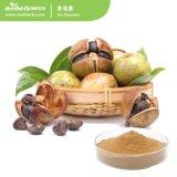 60%~98 % Extrait de thé le thé en saponine saponines prix d'usine