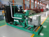 Gruppo elettrogeno del gas della biomassa 20-600kw