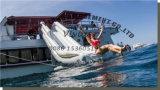 フリースタイルの巡洋艦のヨットのスライド水スライドInflatables