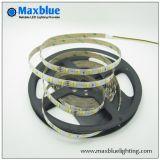Striscia di vendita calda del LED con una striscia di 3528 SMD LED