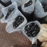 чернота 5-8cm отполировала камень естественного Cobble &Pebble (SMC-PB022)