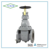 Cast Iron Marine Valve with JIS Standard (JIS F7305 5K)