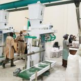 Hongdefa 10tpd pequena fábrica de moagem de trigo moinho de farinha de trigo