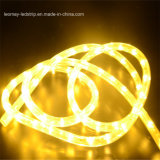 220V/12V/24V適正価格の最もよい卸売Y2 LEDロープライト