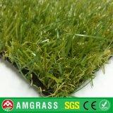Piattaforma Grass e Artificial Turf per il giardino