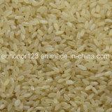 Prix usine échaudé de vente chaud de trieuse de couleur de CCD de riz