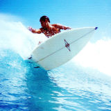 Exquisita Paddle Board reparación especial Resina Epoxi