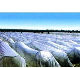 De PP Nonwoven Fabric para Agricultura cobrindo
