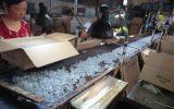 Prezzo di fabbrica di vetro del supporto di candela