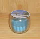 De unieke Gebemerkte Kaars van de Soja Luxe in de Kruik van het Glas