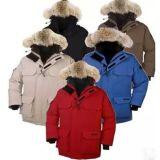 OEMは冬のジャケットのガチョウを塗る厚くする