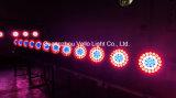 Vello LED 급상승 세척 화소 이동하는 맨 위 단계 빛 (LED XP600 4in1)