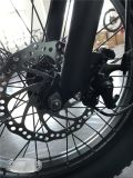 Ce аттестует Assist педали батареи 500W 48V 10.4ah Bike автошины складного электрического велосипеда 20 дюймов тучный