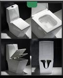 Toletta di un pezzo fissa di Siphonic di vendite degli accessori caldi della stanza da bagno, toletta di ceramica
