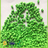 Granules de plastique de HDPE de Vierge de Masterbatch de couleur verte