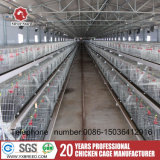 La couche d'un type de poulets de chair de poulet de type H Chambre Cage de poulet