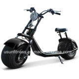 Prince Harley Scooter Electric Motorcycle City Bike E-Bicycle with It