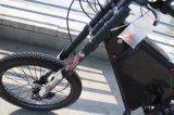 강력한 Leili 바닷가 함 5000W Enuro Ebike 전기 자전거