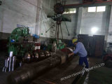 L'eau industrielle et pompe à plusieurs étages horizontale d'eaux résiduaires