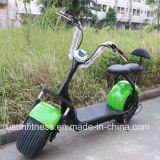セリウムが付いているHarleyのオートバイのCitycocoの緑の走行の電気スクーター