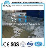 Proyecto de acrílico claro modificado para requisitos particulares del tanque de pescados del acuario