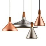 Lámpara pendiente interior para la luz de interior de la decoración de la iluminación