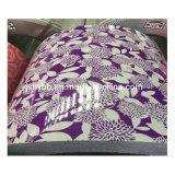 上塗を施してある鋼鉄は中国からの花によって印刷されるPPGIのコイルを巻く