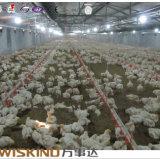 Профессиональная стальная дом цыпленка для сбывания