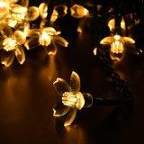 Indicatore luminoso solare di festa della stringa del fiore della pesca con 20/30/50 di LED