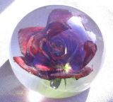Bola cristalina hermosa con Flowr hermoso como regalo para el amante
