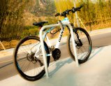 Шкаф стоянкы автомобилей индикации велосипеда формы u (одобренный SGS TUV ISO)