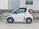 Gemaakt in de Elektrische Kleine Slimme Auto van China met 2 Zetels